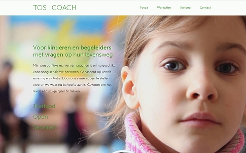 Responsive One Page website TOS-COACH - Dualler